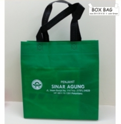 BOX BAGS DARK GREEN PRESS