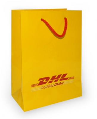 large2 Customized Paper Bags dhl